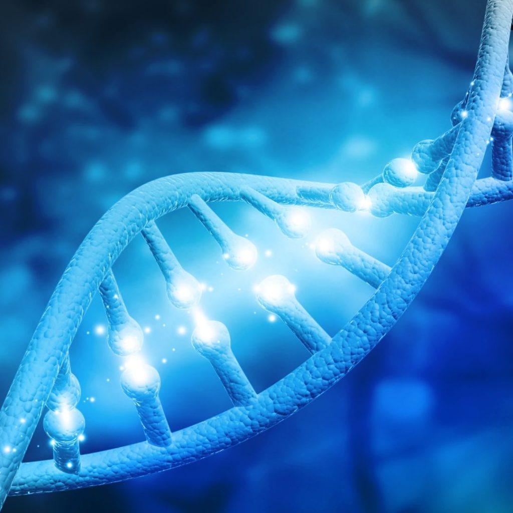sperm dna fragmentation testing